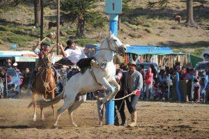 Fiesta del piñón - Palenque